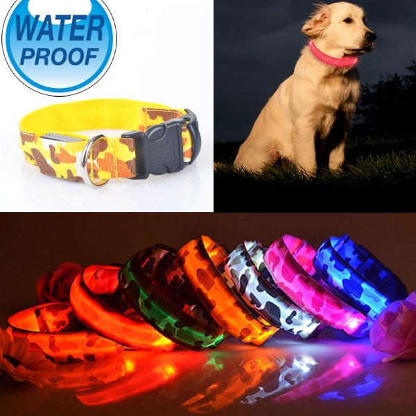 Collier Chien Lumineux Led Waterproof Resistant Leopard Nuit